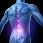 Lower back pain and human backache with an upper torso body skeleton showing the spine and vertebral column in glowing highlight as a medical health care concep